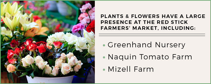 farmers markets in baton rouge with flowers and plants